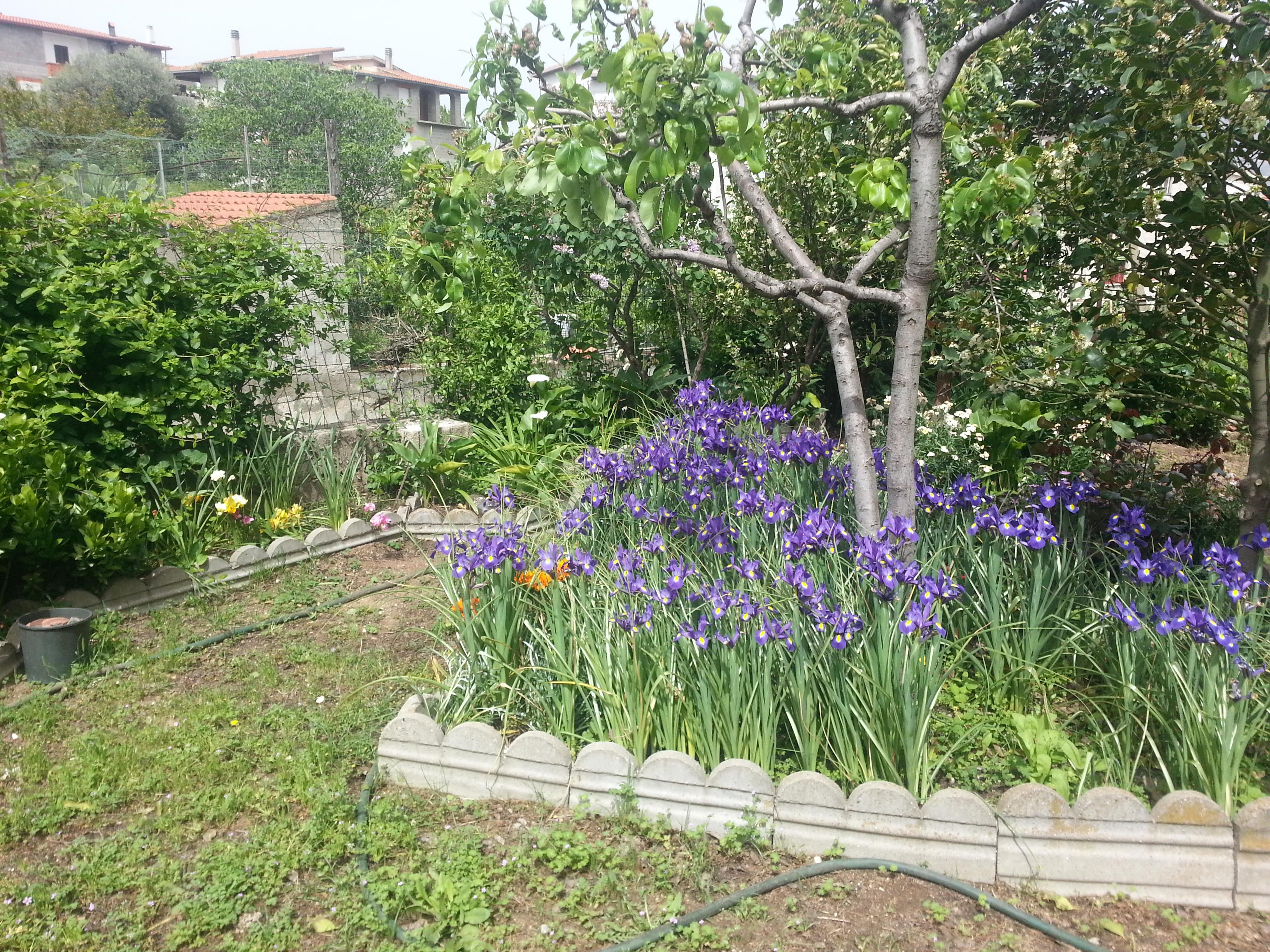 Piccoli angoli di paradiso for Foto angoli giardino
